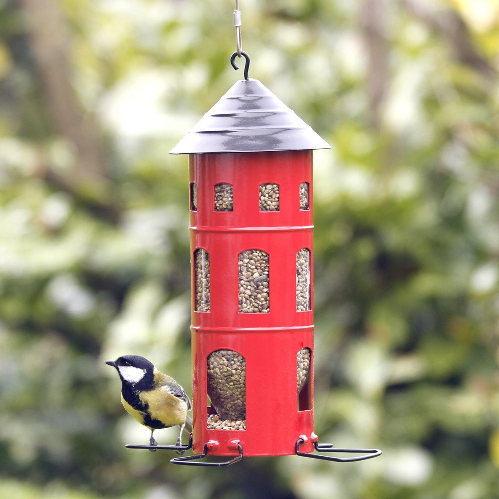 Seed suet ball feeders the blue door for How to make suet balls for bird feeders