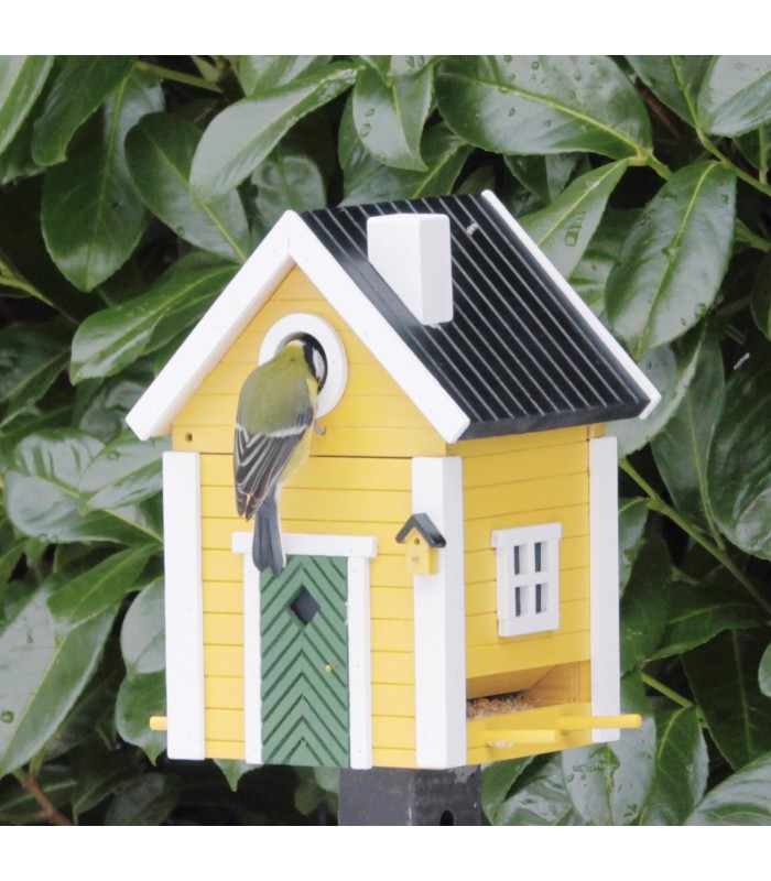 Yellow Cottage Bird Feeder and Nesting Box