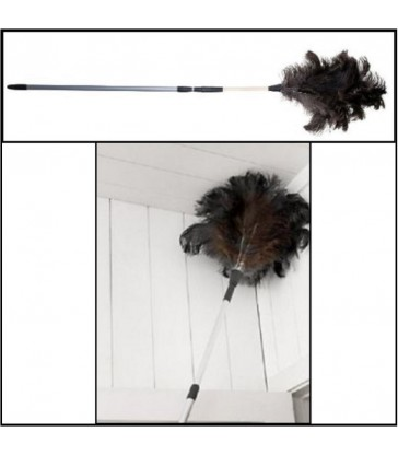 Telescopic Ostrich Feather Duster