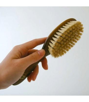 Cat Pet Brush