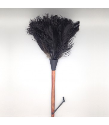 Feather dusters for spring cleaning and dusting