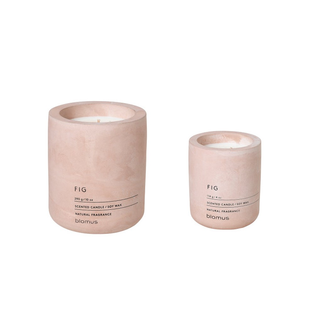 Fig Scented Soy Wax Candle 2 Sizes The Blue Door