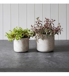 Concrete Bowl Straight - Small and Large