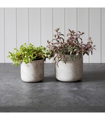 straight concrete plant pots for indoor use only in two sizes
