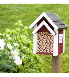 Red Bee Box for Solo Bees