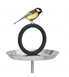 Stainless Steel Bird Bath