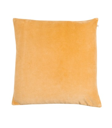 Velvet cushion with feather filler
