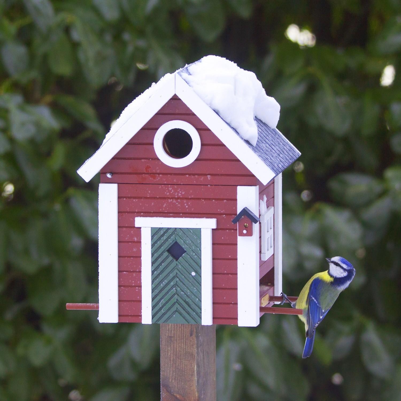 Red Cottage Bird Feeder Amp Nesting Box The Blue Door