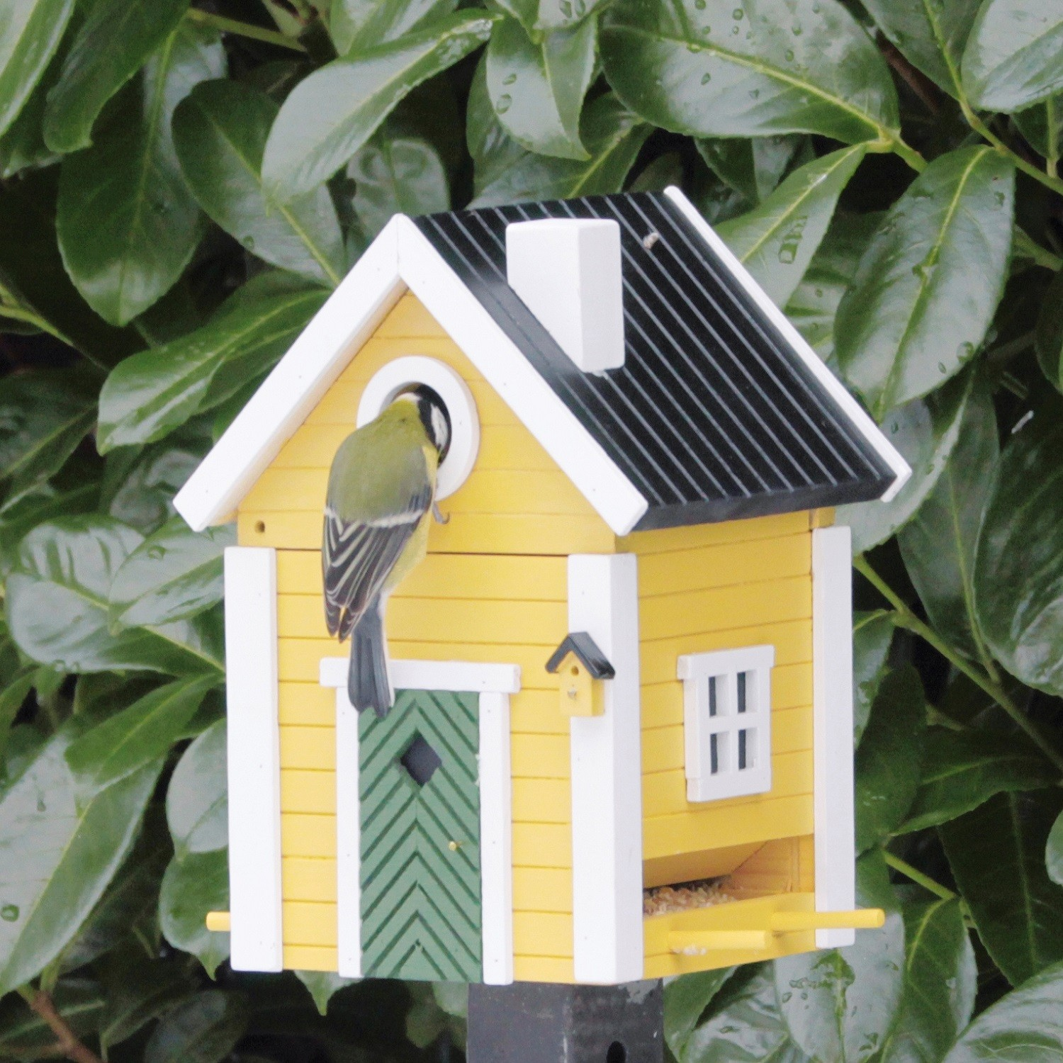 Yellow Cottage Bird Feeder And Nesting Box The Blue Door