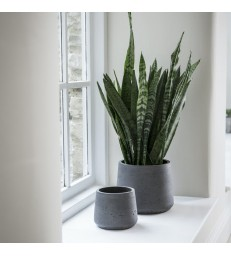 Set two dark grey cement pots - tapered