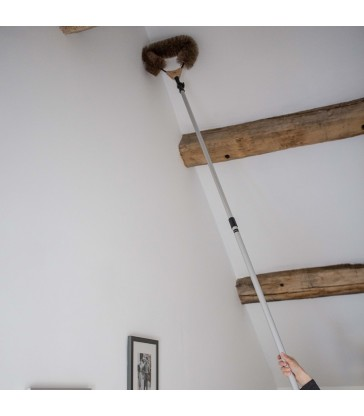 cobweb dusting brush with adjustable head