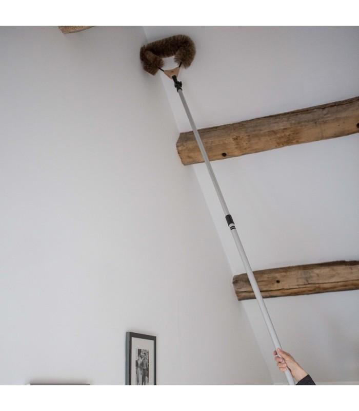 cobweb dusting brush with adjustable head