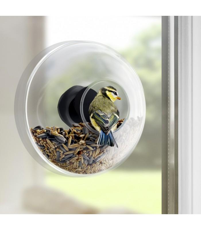 Large Window Bird Feeder for your kitchen garden window