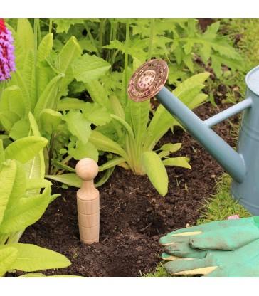 Plant Dibber - Garden Tools