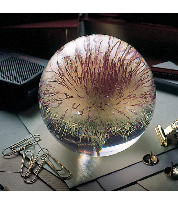 Thistle Paperweight