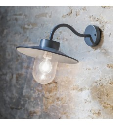 Wall Light - Swan Neck Charcoal Grey